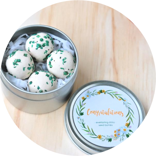 – Congratulations – <br> everlasting daisy seed bombs