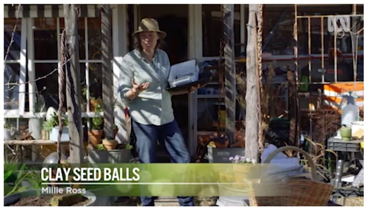 Gardening Australia makes seed bombs