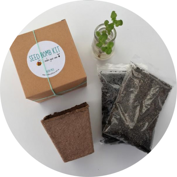 – Seed Bomb Kit – <br> Herb mix