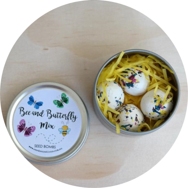 Bee and Butterfly seed bombs