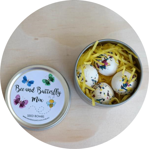 bee, pollinator, butterfly, seed bombs, seed, plant, grow, throw and grow, seedball, urban gardening, fun